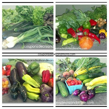 Sign Up For a CSA