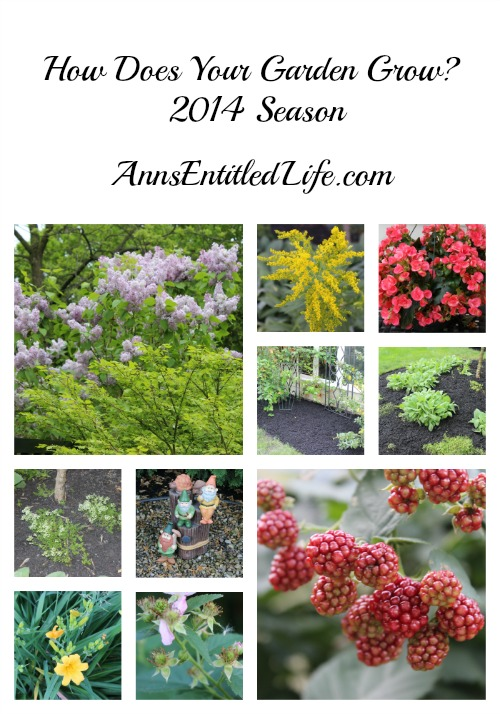 How Does Your Garden Grow? 2014 Season