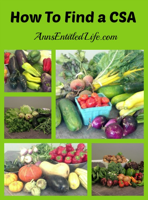 How To Find A CSA