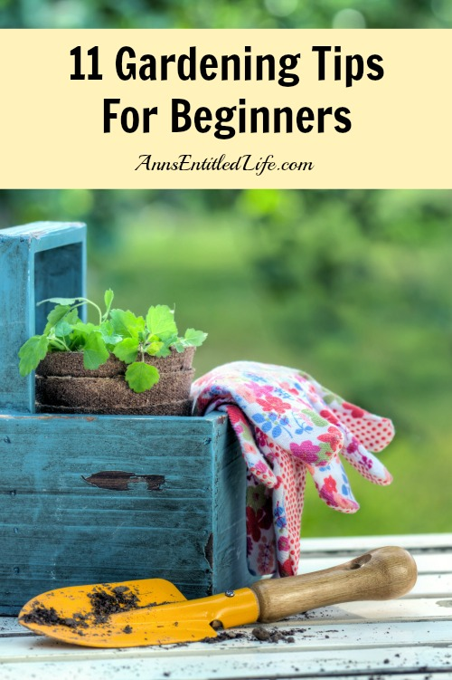 11 Gardening Tips For Beginners. Just starting a brand new garden? Moved into an old house and looking to revitalize the old gardens there?  Here are 11 Gardening Tips For Beginners to get you started.