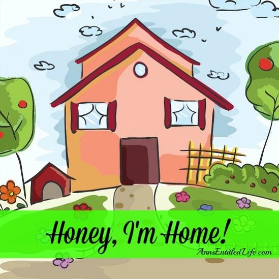honey i m home ann 39 s entitled life. Black Bedroom Furniture Sets. Home Design Ideas
