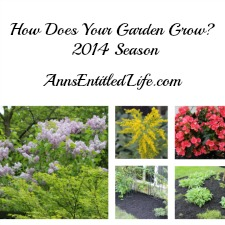 How Does Your Garden Grow? 2014 Season