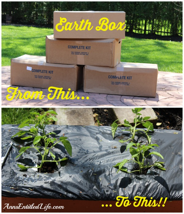 Earth Box Set-up - How Does Your Garden Grow?