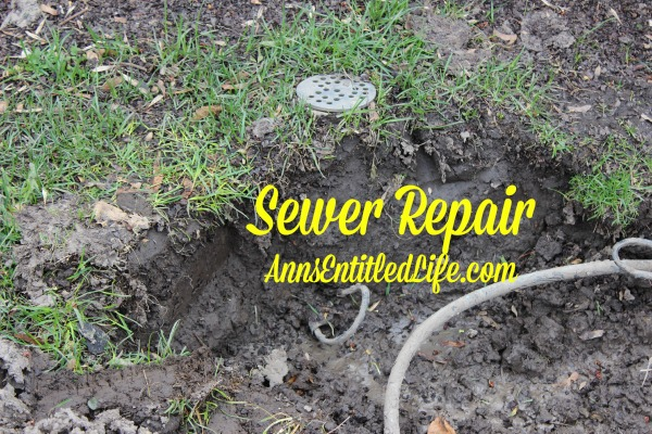 Sewer Repair