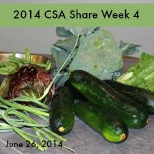 2014 CSA Share Week 4