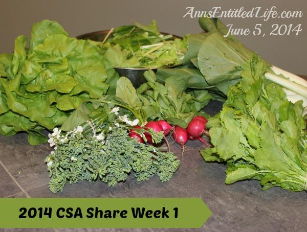 2014 CSA  Share Week 1