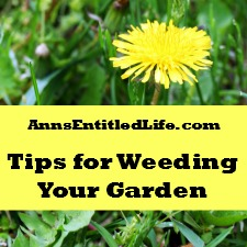 Tips For Weeding Your Garden