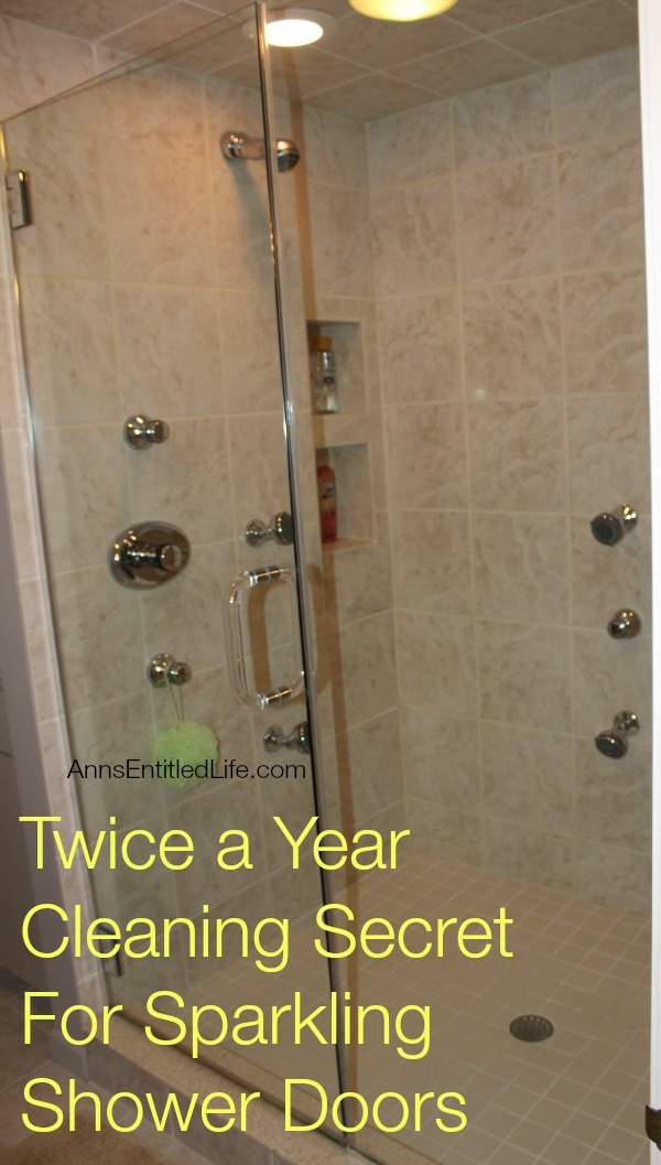twice a year cleaning secret for sparkling shower doors. Black Bedroom Furniture Sets. Home Design Ideas
