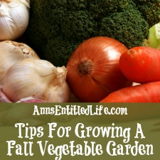 Tips For Growing A Fall Vegetable Garden