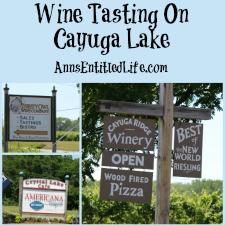 Wine Tasting On Cayuga Lake