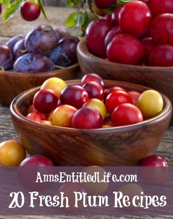 20 Fresh Plum Recipes. Savor the sweet flavor of fresh plums with these 20 Fresh Plum Recipes. From crumbles to jams to cakes and pies, there is a fresh plum recipe for everyone to enjoy!