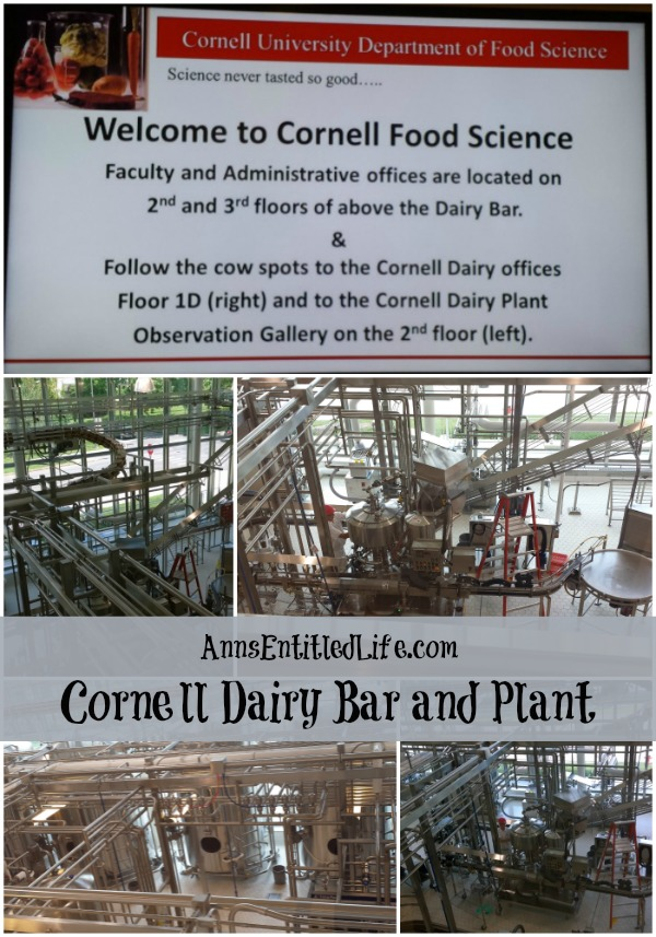 Cornell Dairy Bar and Plant