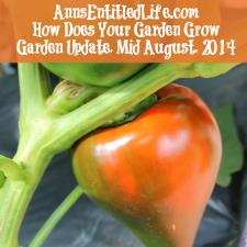 Garden Update, Mid August, 2014