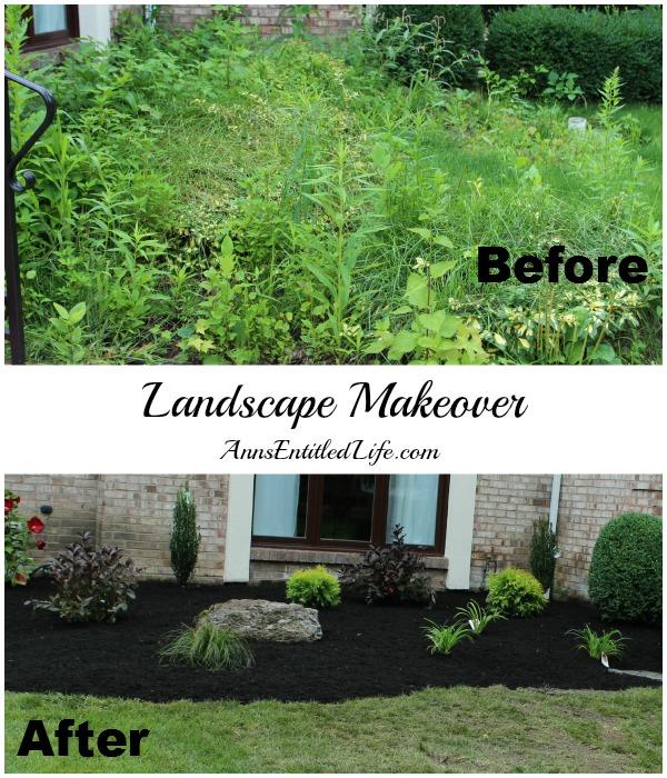Landscape Makeover