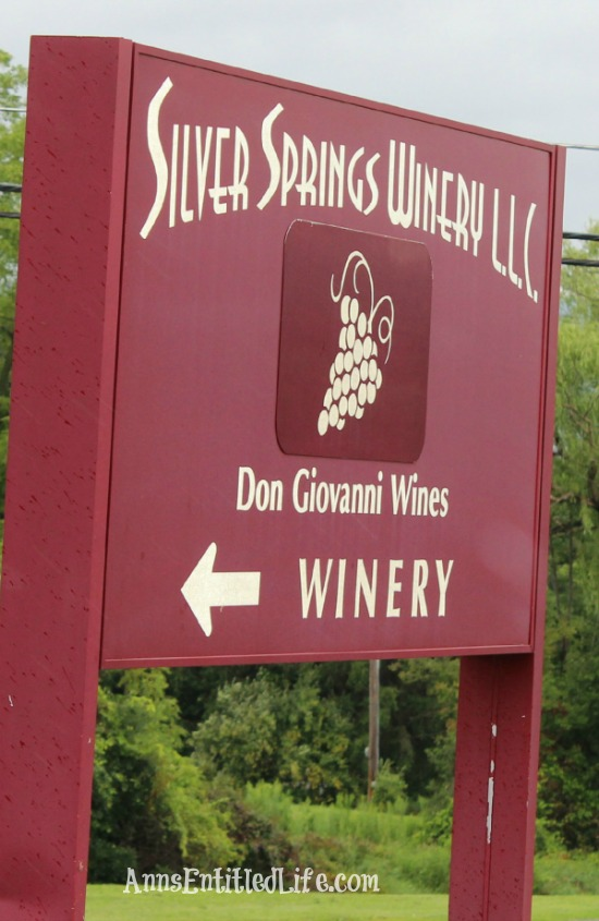 Wine Tasting On Seneca Lake