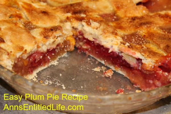 Easy Plum Pie Recipe. Now is the time to make this easy plum pie recipe when plums are in season! Sweet and delicious, this lovely plum pie is a wonderful dessert that everyone will enjoy.