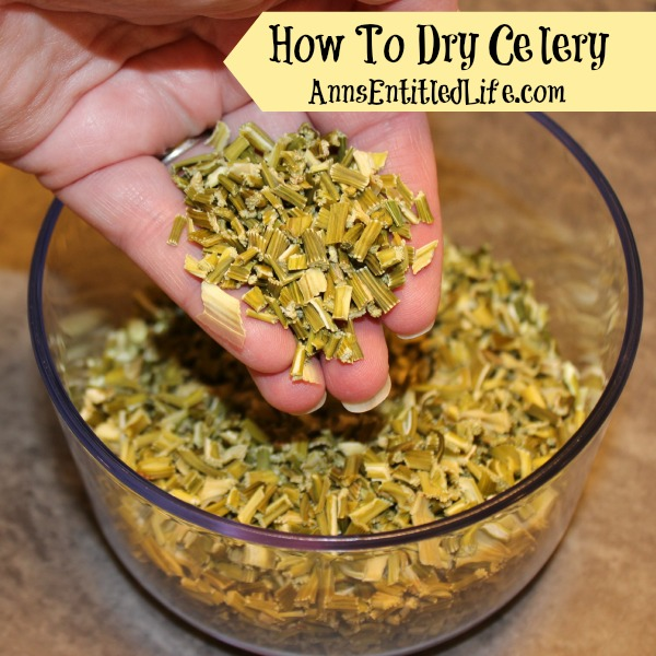 How To Dry Celery. If you have an abundance of celery, either from your garden, CSA, or a store sale, here are easy step by step instructions on how to dry fresh celery for later use.