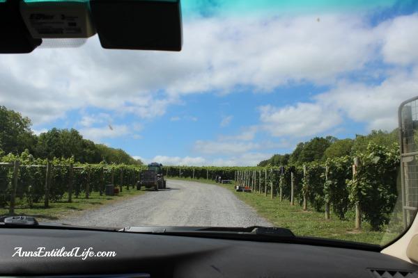 Red Tail Ridge Winery