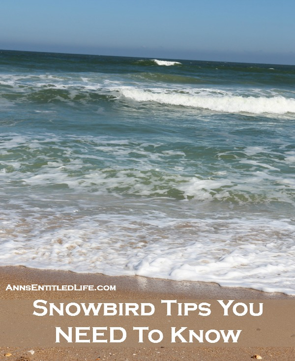 Snowbird Tips You NEED To Know