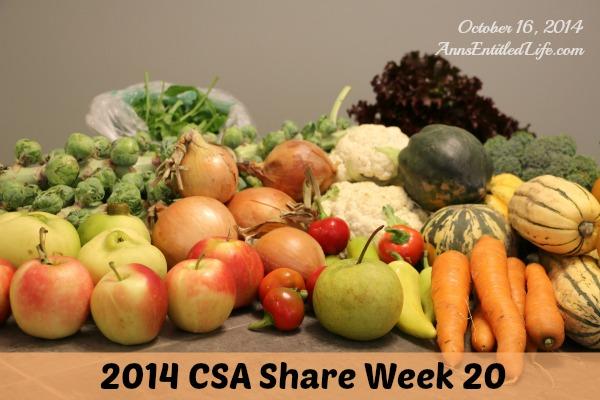 2014 CSA Share Week 20
