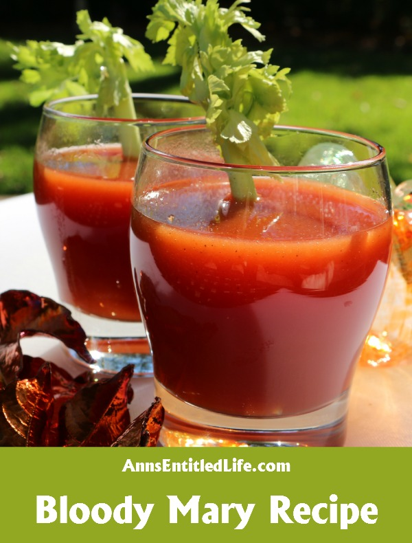 Bloody Mary Recipe.  Breakfast, lunch or dinner, the classic Bloody Mary Recipe made with vodka, tomato and lemon juice and just a splash of zest and spice is perfect anytime of day!