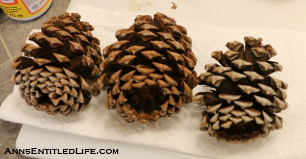 Painted Pine Cones in a Basket