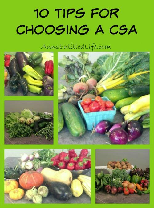 10 Tips For Choosing a CSA