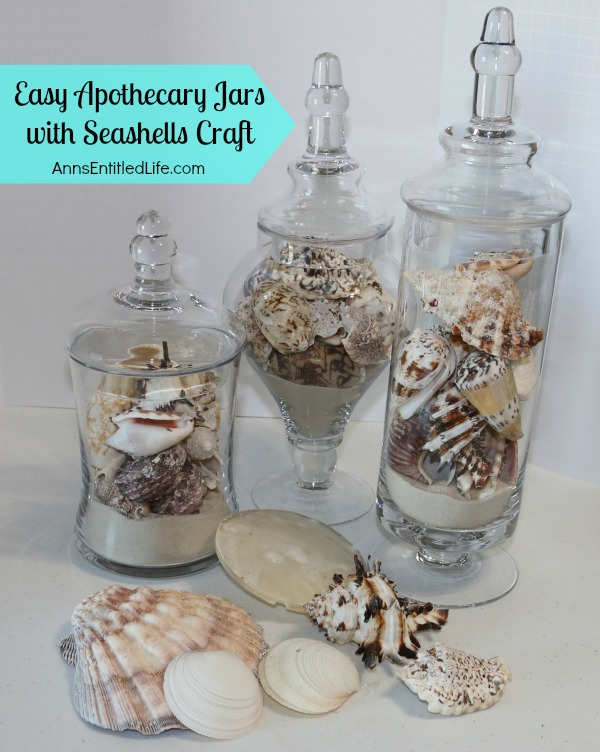 Apothecary jars with seashells for Large seashells for crafts