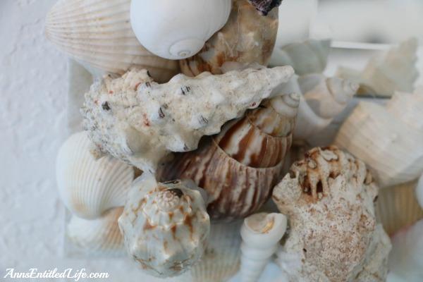 How To Make A Seashell Mirror