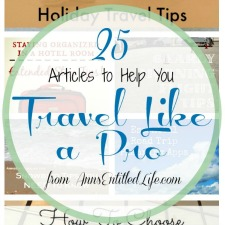 25 Articles to Help Your Travel Like a Pro