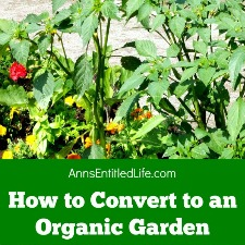 How to Convert to an Organic Garden