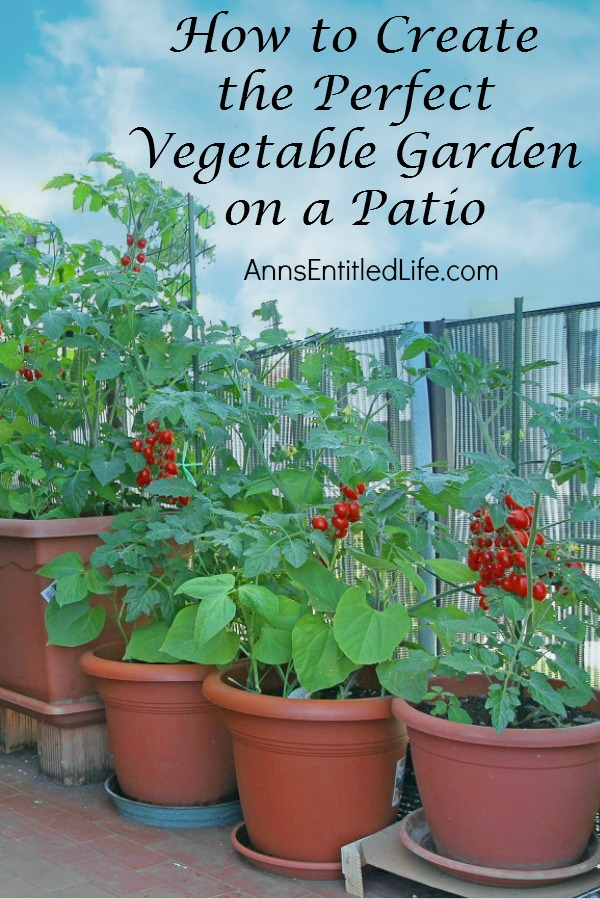 How to create the perfect vegetable garden on a patio for Creating a vegetable garden
