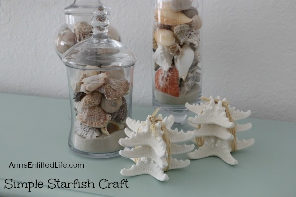 Simple Starfish Craft