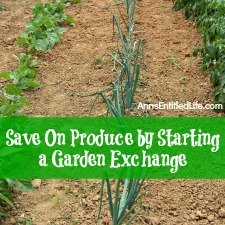 Save On Produce by Starting a Garden Exchange