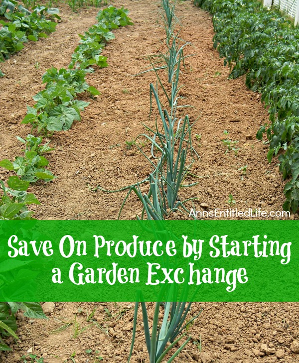 Save On Produce by Starting a Garden Exchange; tips and advice on how to start and participate in a garden exchange.