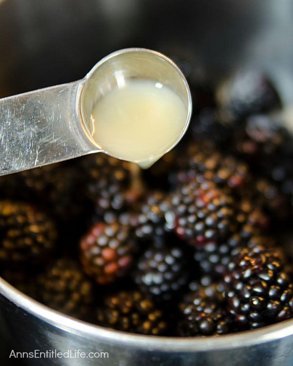 Blackberry Refrigerator Jam Recipe