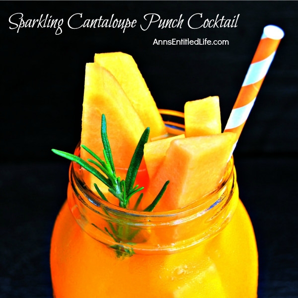 Sparkling Cantaloupe Punch Cocktail