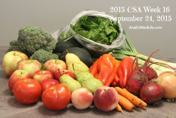 2015 CSA Share Week 16