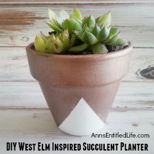 DIY West Elm Inspired Succulent Planter