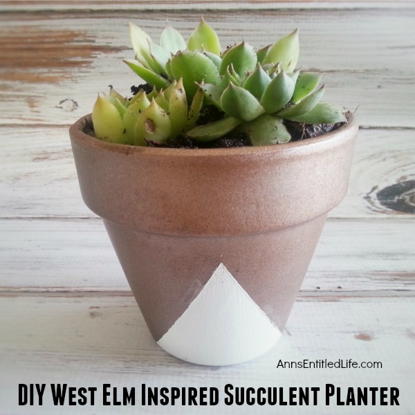 This DIY, West Elm Inspired Succulent Planter is a great way to bring summer inside all year round! Dress up a large pot; plant some herbs, a few trailers and more. Start a fantastic planter shelf or brighten up your current planters with this cute metallic design. Easy to care for succulent plants are wonderful way to brighten up your planter shelf! Really make your indoor and outdoor planters POP!