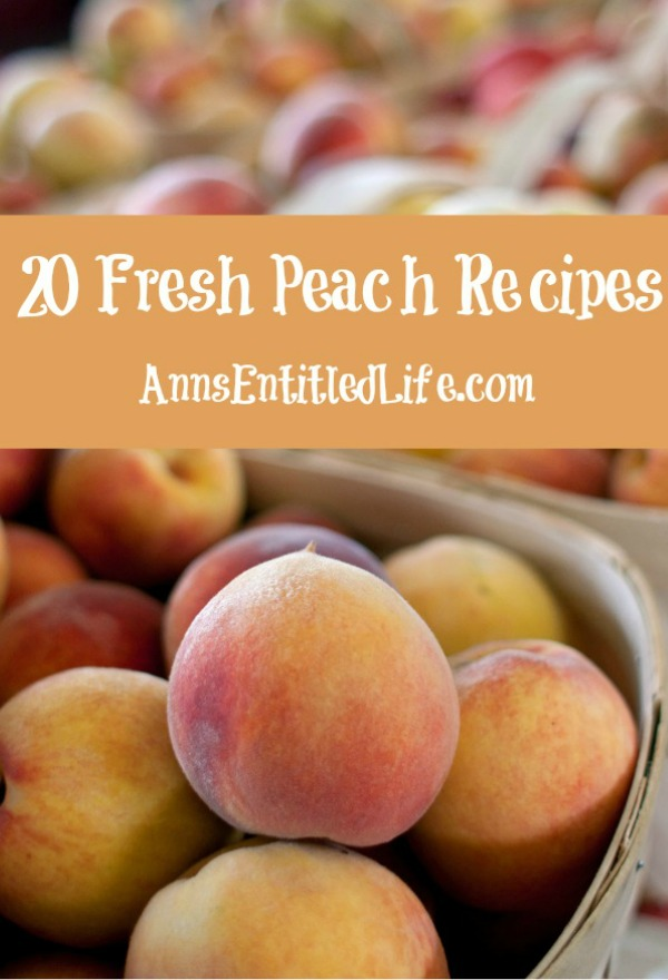 20 Fresh Peach Recipes. Savor sweet, juicy peaches this summer these exceptional peach recipes. From cobblers to jams, butters and drinks, these 20 fresh peach recipes are a welcome addition to any meal.