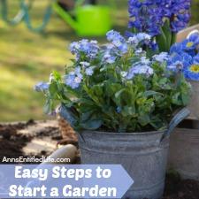 Easy Steps to Start a Garden