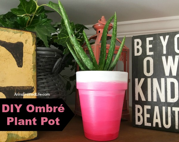 Diy Ombre Plant Pot Dress Up Your Pots With An Exciting Array Of Colors
