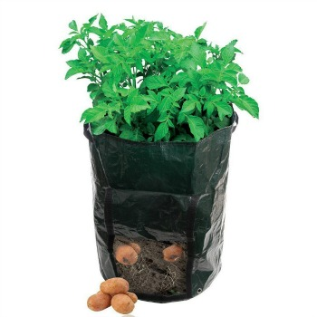 Garden Potato Grow Bag