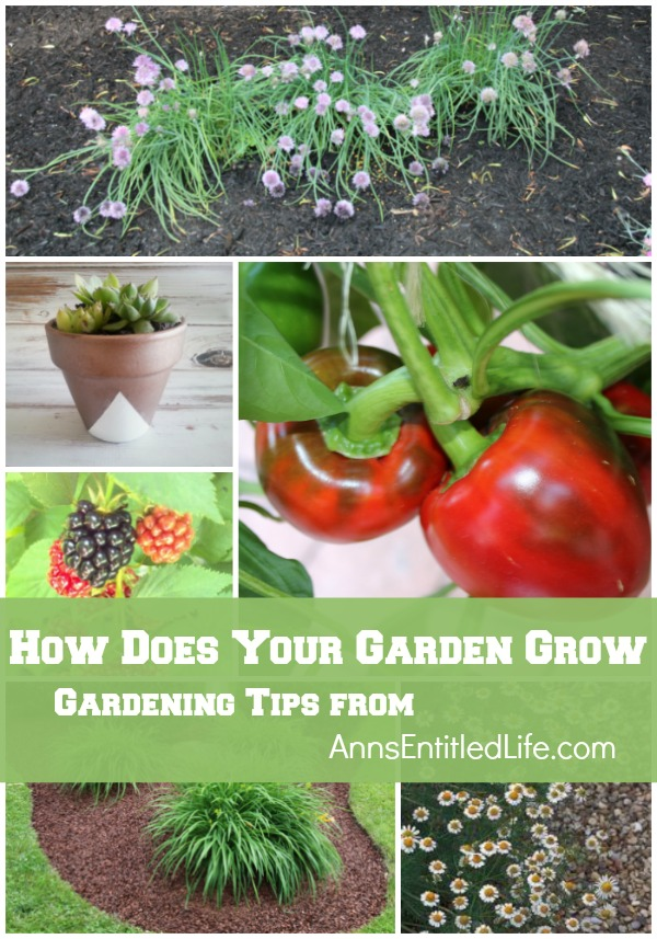 How Does Your Garden Grow? Information and inspiration on gardening. Gardening tips, features and resources about landscapes, trees, shrubs, perennials, annuals, vegetables, herbs, flowers and more, brought to you by AnnsEntitledLife.com
