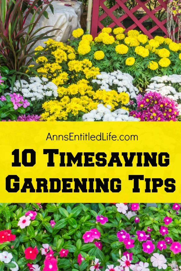 10 Timesaving Gardening Tips. A garden is the perfect way to add color to your landscape, and food to your fridge. A garden can provide you with so many benefits that growing one is definitely worth your while. But what if you want a garden, and just do not have the time or energy to care for it? Well the good news is there are ways to achieve a healthy and productive garden without a ton of effort or time. Take a look below at 10 Timesaving Gardening Tips, so you can grow the garden of your dreams without breaking your back.