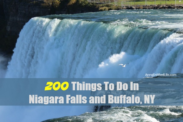 200 Things To Do In Niagara Falls and Buffalo, NY. A listing of 200 Things To Do In Niagara Falls and Buffalo, NY that are family friendly activities. From state parks to museums, to architecture and zoos, there is a lot to do in Niagara Falls, New York, Buffalo, New York, and all of Western New York.