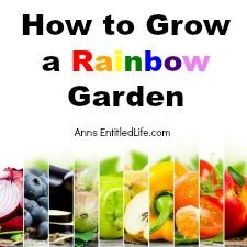How to Grow a Rainbow Garden