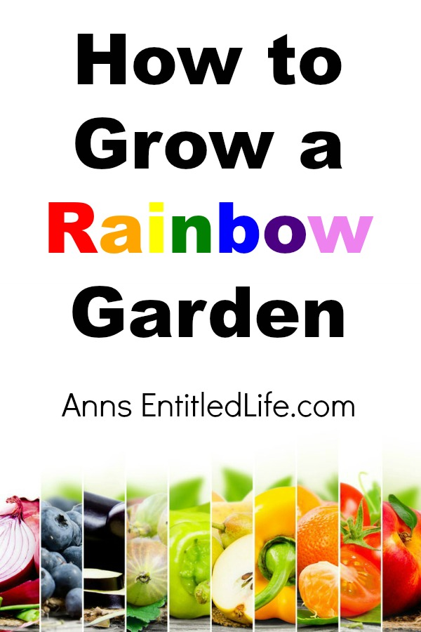 How to Grow a Rainbow Garden. Instructions detailing what plants to plant, and how to grow a beautiful, and nutritious, garden in the colors of a rainbow.