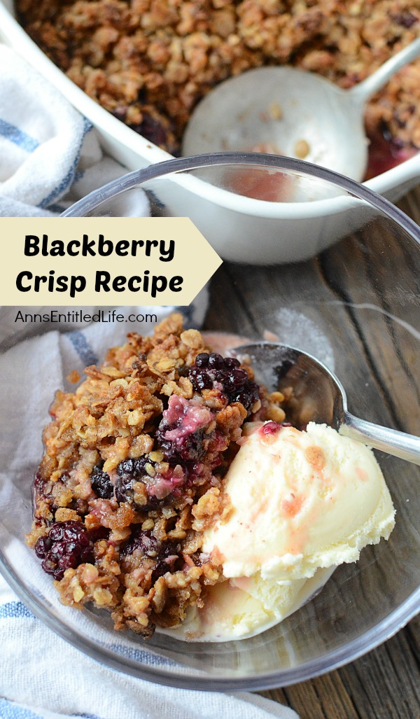 a serving of blackberry crisp a la mode with ice cream in a clear bowl and spoon, blue striped napkin to the left, the serving container and serving spoon of blackberry crisp is in the background